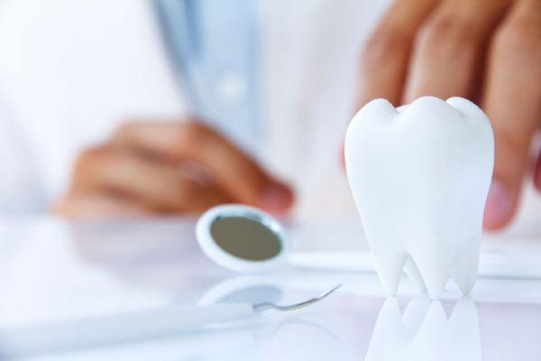 ما هي أفضل الجامعات في فرنسا لدراسة طب الأسنان ؟