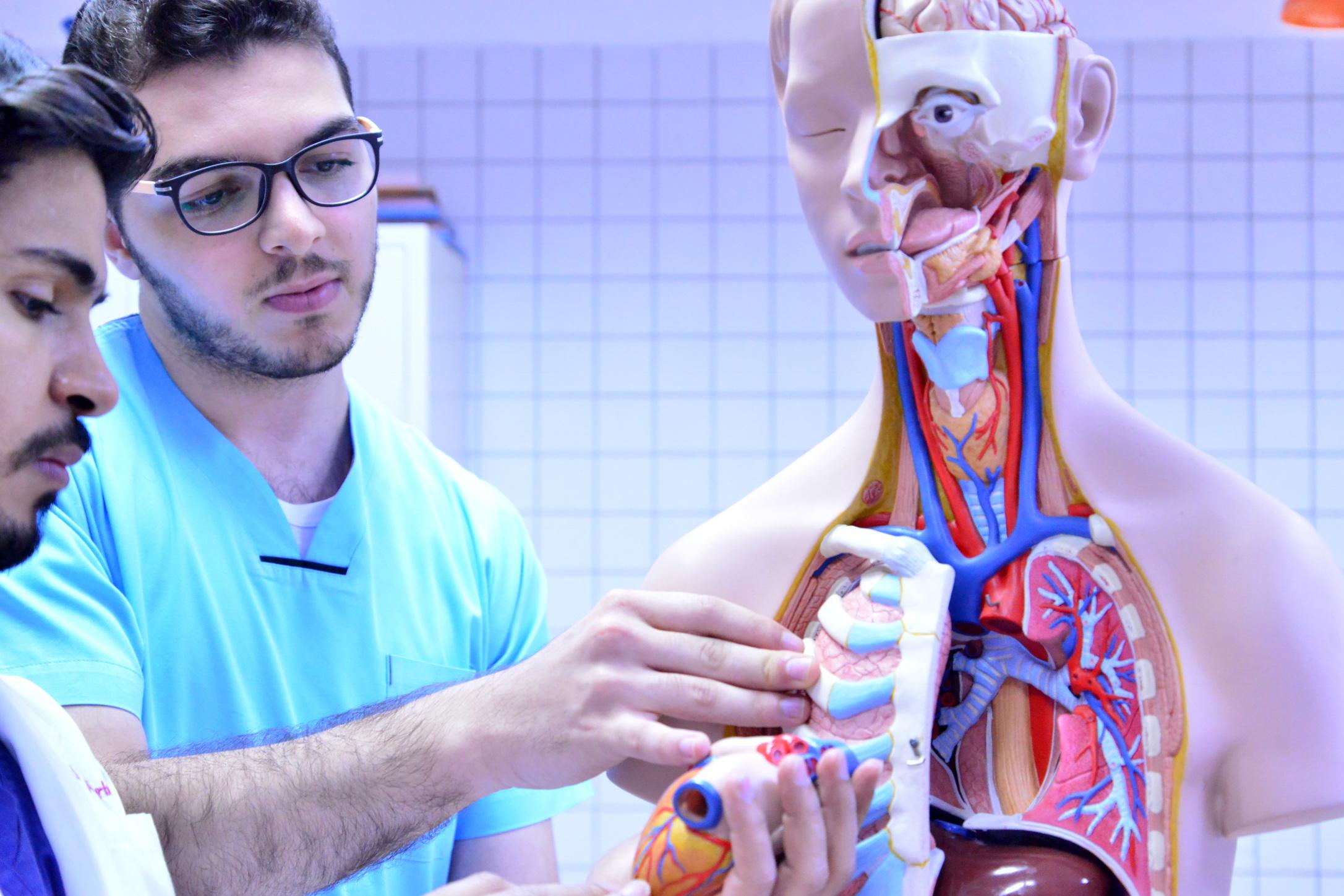 ما هي أفضل الجامعات في كندا لدراسة الطب البشري؟