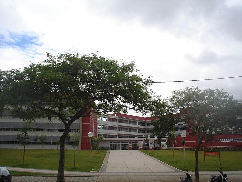 جامعة ميناس جرايس